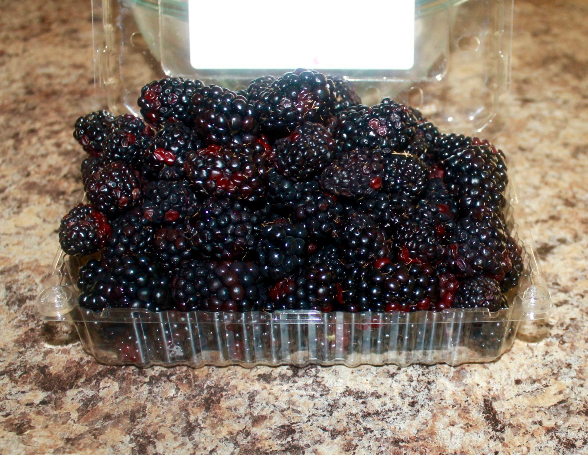 Fresh Blackberries or Frozen Blackberries for Blackberry Cobbler recipe